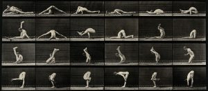 V0048738 An acrobat in various contortions. Photogravure after Eadwea Credit: Wellcome Library, London. Wellcome Images images@wellcome.ac.uk http://wellcomeimages.org An acrobat in various contortions. Photogravure after Eadweard Muybridge, 1887. 1887 By: Eadweard Muybridge and University of Pennsylvania.Published: 1887 Copyrighted work available under Creative Commons Attribution only licence CC BY 4.0 http://creativecommons.org/licenses/by/4.0/